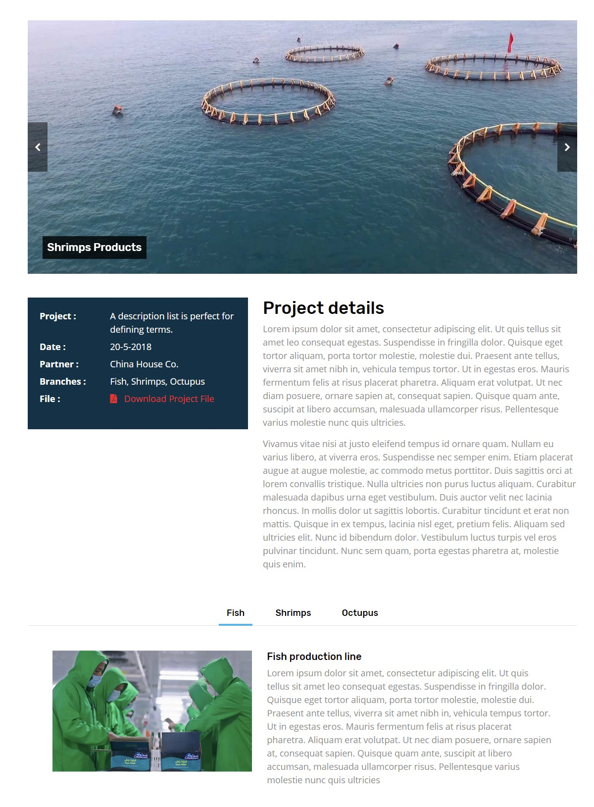 Well Detailed Project Page